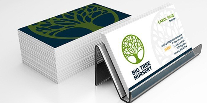 Standard Business Card Printing Print